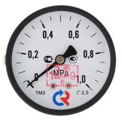 """Манометр TM310T Dy 63 с задним подключением 1/4"""", 0-6 бар"""